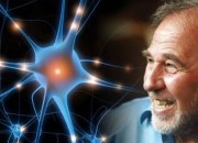 Bruce-Lipton-Epigenetica